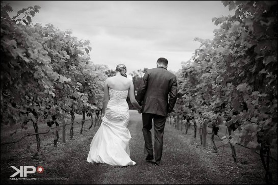 Vineyard Wedding New Jersey